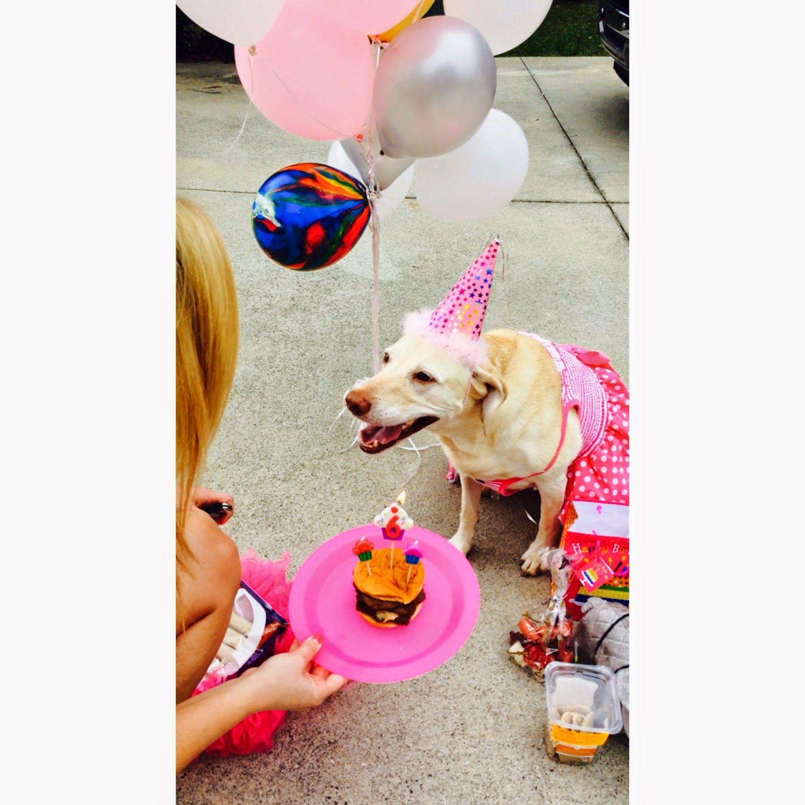 When in Doubt Just Add Glitter: Hartley Bear turns 6
