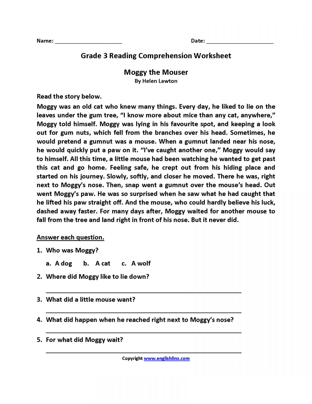 Spider Reading Comprehension Worksheet and Reading ...