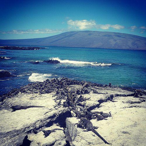 Galapagos Equateur Galapagos Natural Landmarks Ecuador