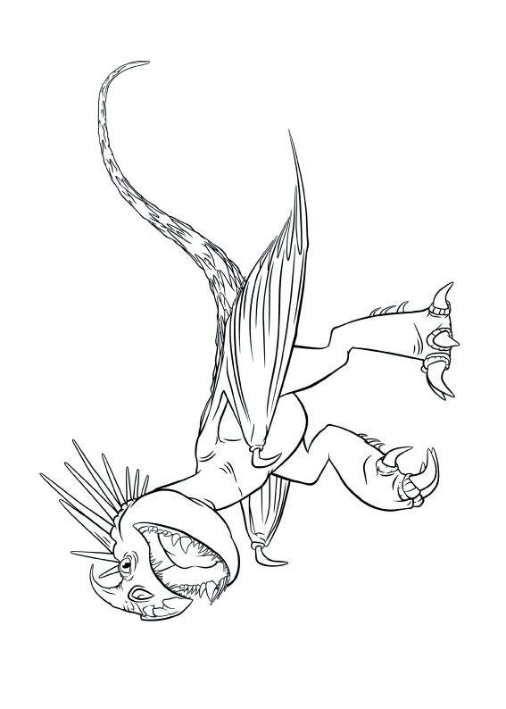 33 Disegni Di Dragon Trainer 1 E 2 Da Colorare Disegni Drago