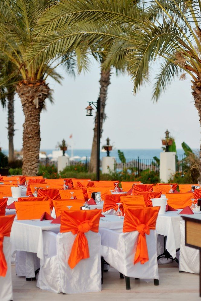 Outdoors under palm trees decorated with orange bows many banquet tables