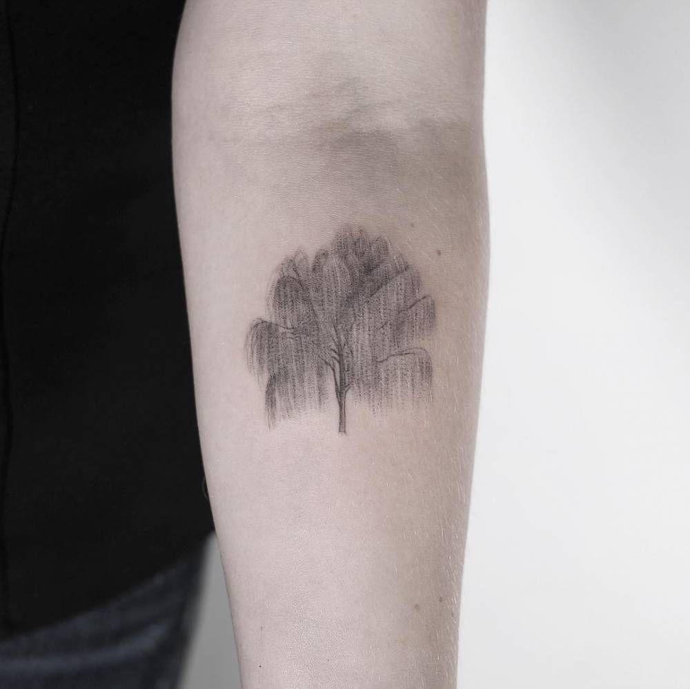 Pin by Fernanda Mora Gutierrez on Tattoo ideas Willow