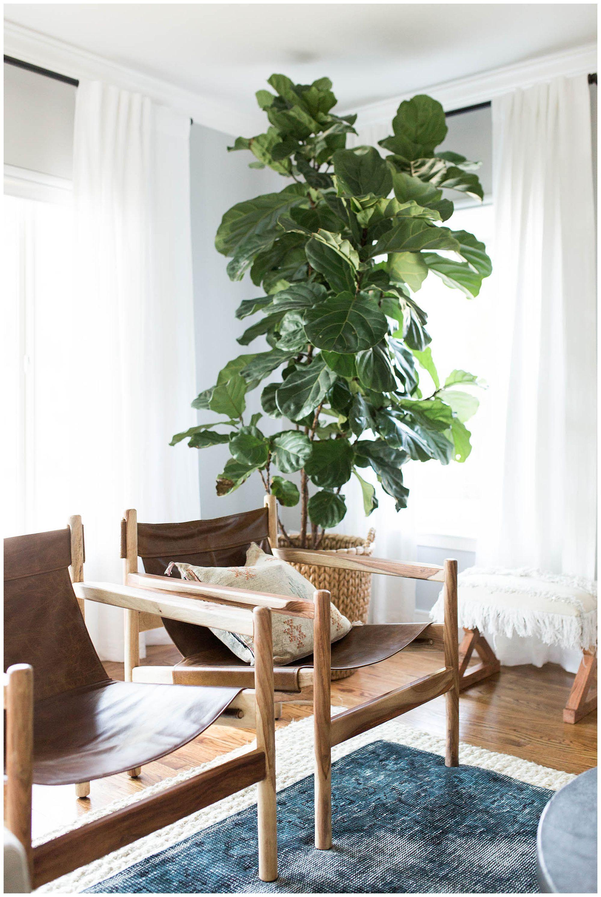 Reveal Relaxed Family Home Sacramento Ca Design Interiors