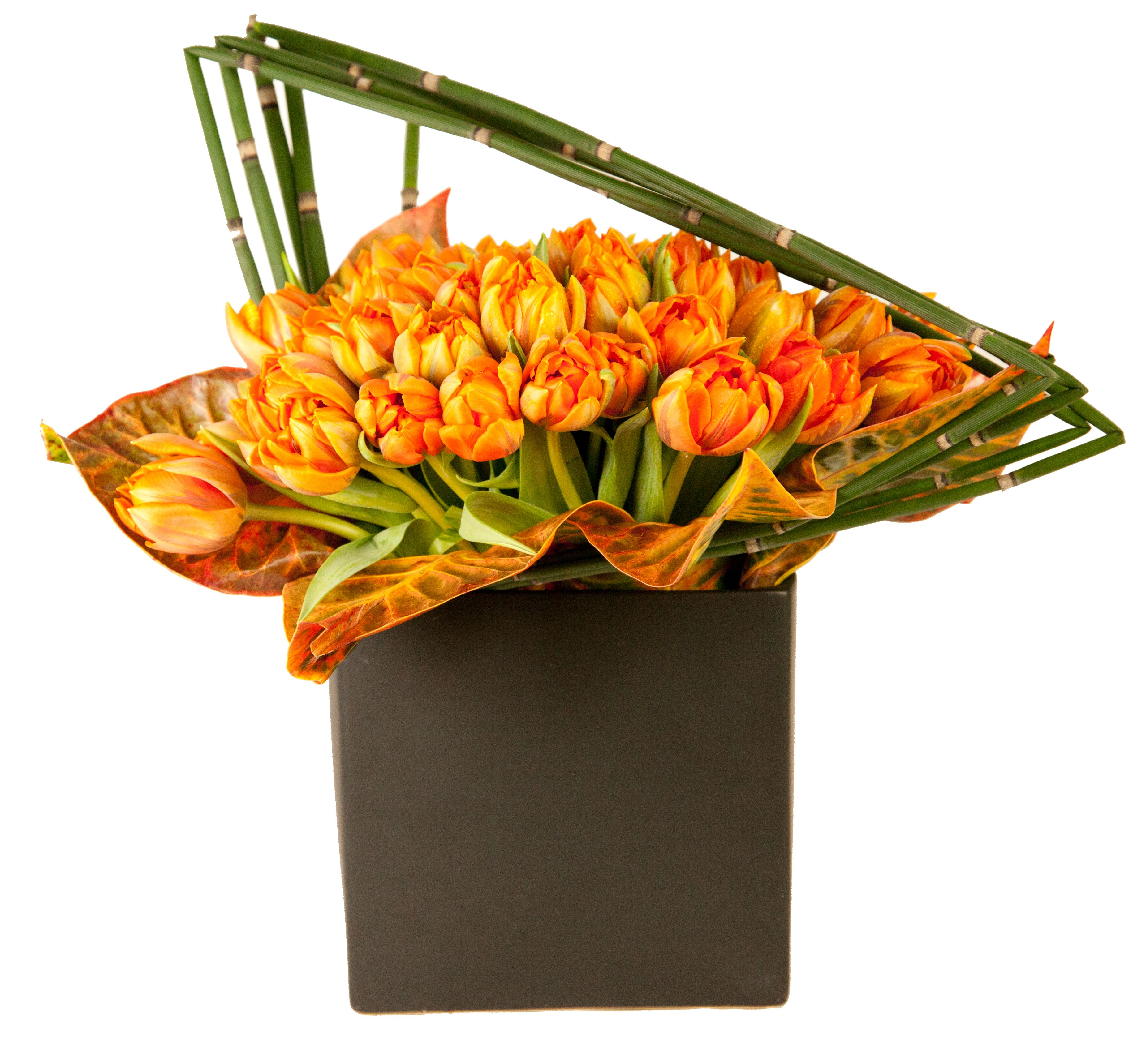 Orange tulips Same day flower delivery, Flower delivery