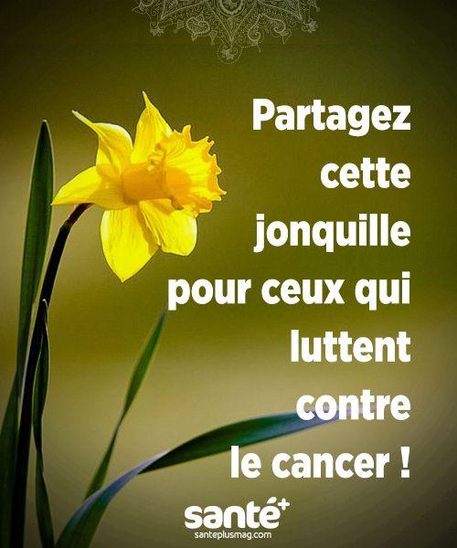 Extraordinaire Lutte contre le cancer.   ☙ Recueil de citations #WV_74