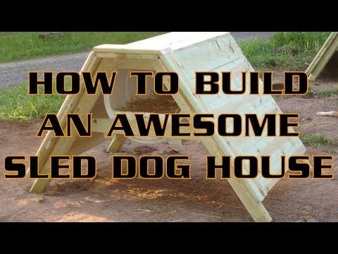 How To Build An Awesome Sled Dog House A Frame