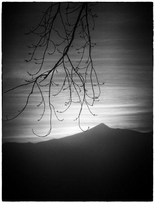 stephaniadapolla:© Stephania Dapolla
