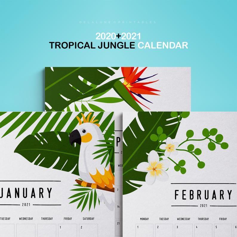 2020 2021 PRINTABLE Calendar   JUNGLE TROPICAL calendar   Agenda