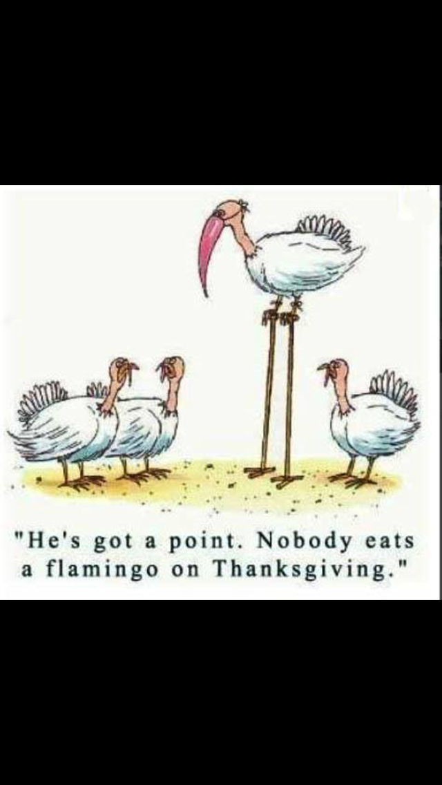 Thanksgiving cartoon image by Marie Jezbera on Holidays
