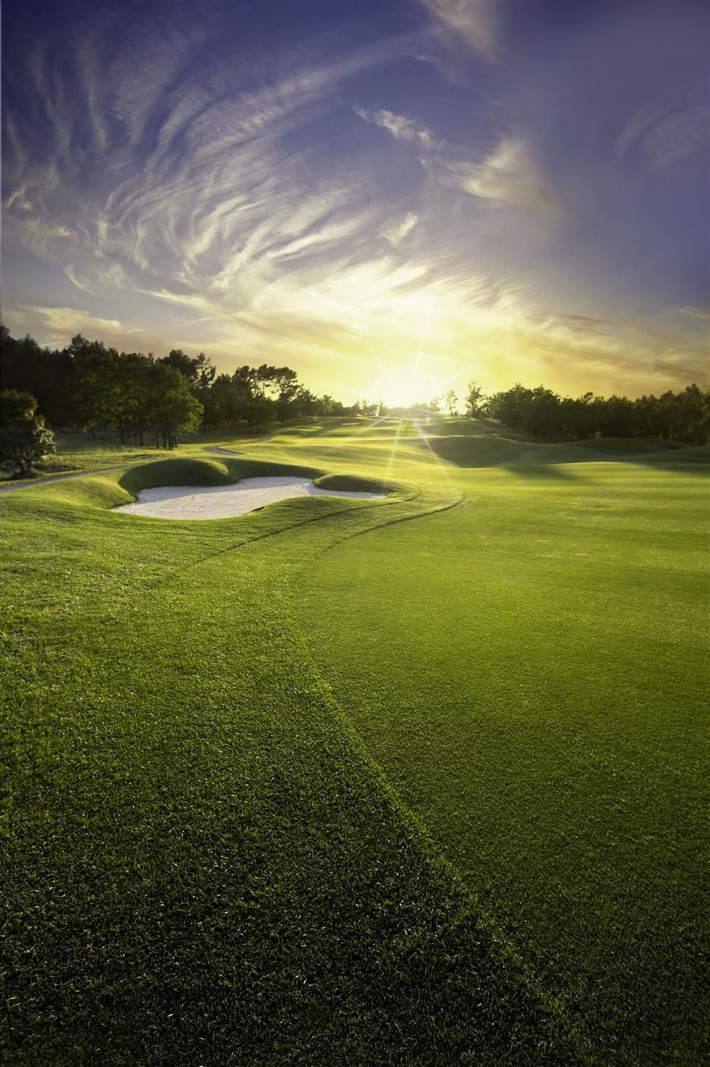 Take Your Swing Global With More Golf Packages Worldwide Public Golf Courses Golf Courses Golf Resort