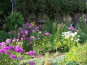 mehrjährige stauden in einem cottagegarten | garten | pinterest, Best garten ideen