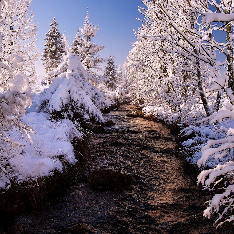 Wintermärchen II von JOGA