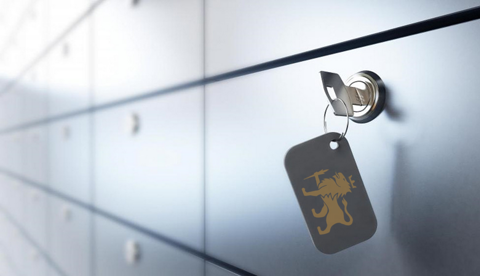 Safe Deposit Box (With images) Safe deposit box, Box