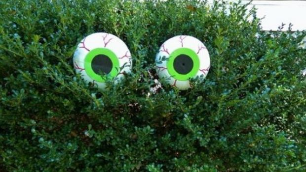 Large Spooky Glowing Eyes Eyes glows   nembly/p/Hk8vPL0rW - large outdoor halloween decorations