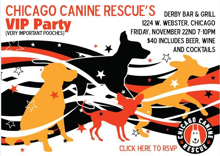 Please Join Chicago Canine Rescue On Nov 22nd For Their Vip Party Canine Rescue Pooch
