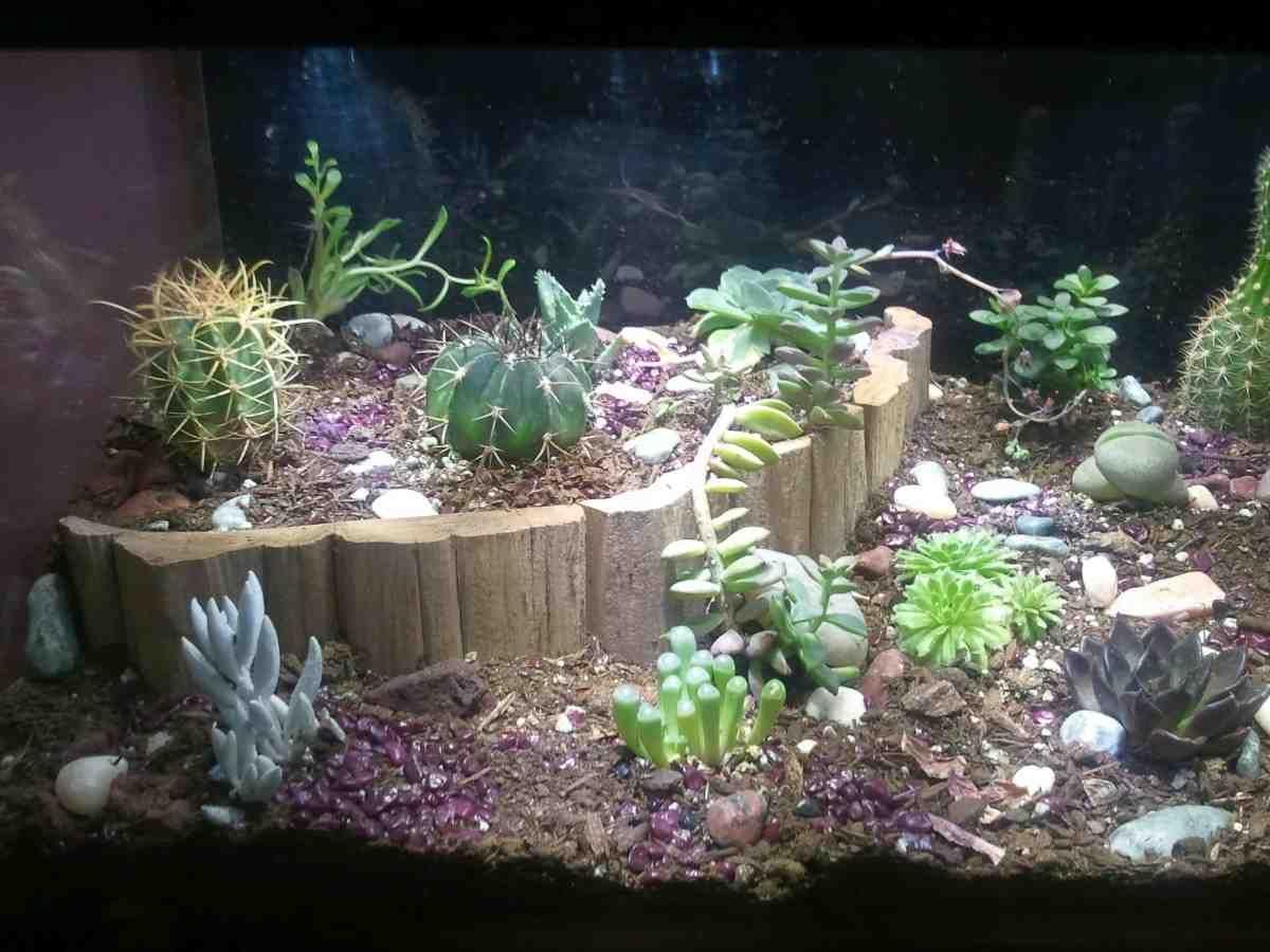 Fish Bowl Decorations Ideas Custom Aquarium Decorations  Tv Aquarium Decor  Pinterest