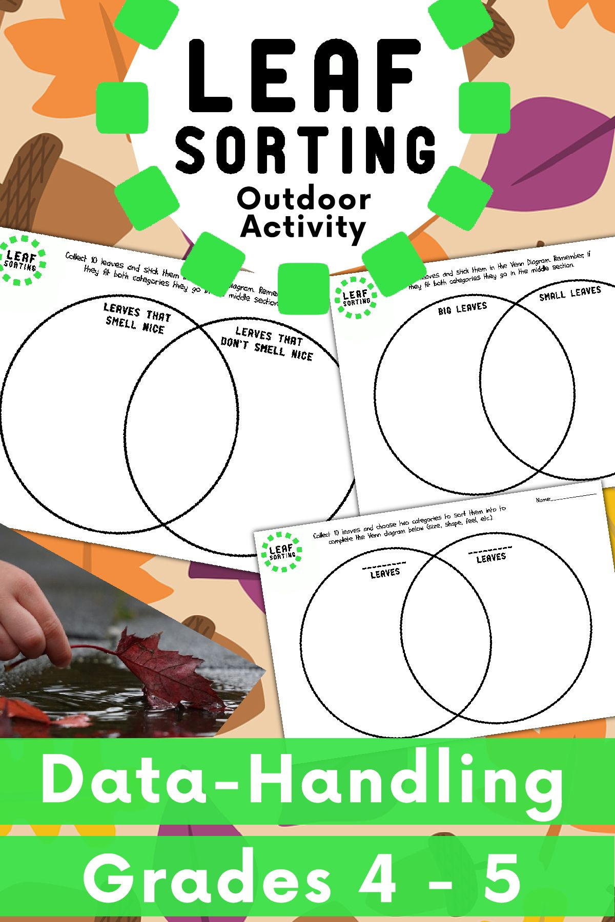 Leaf Sorting Venn Diagram Activity Venn Diagram Activities Venn Diagram How To Introduce Yourself [ 1800 x 1200 Pixel ]
