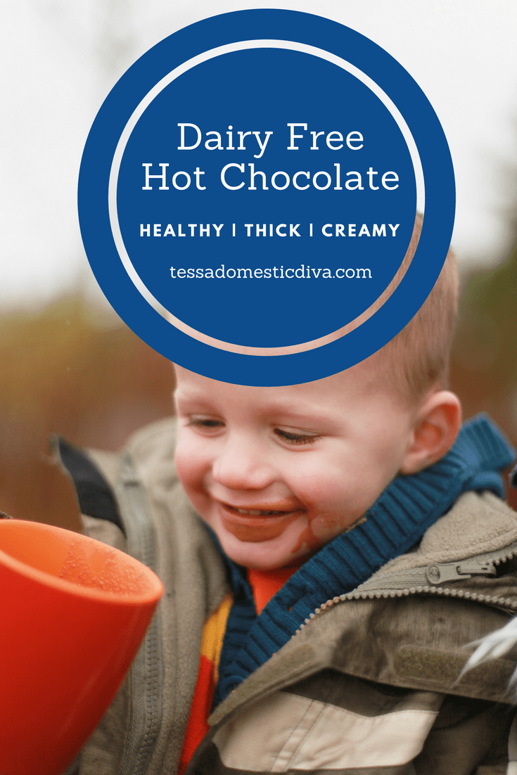 Healthiest Cup of Hot Chocolate, Dairy Free Recipe