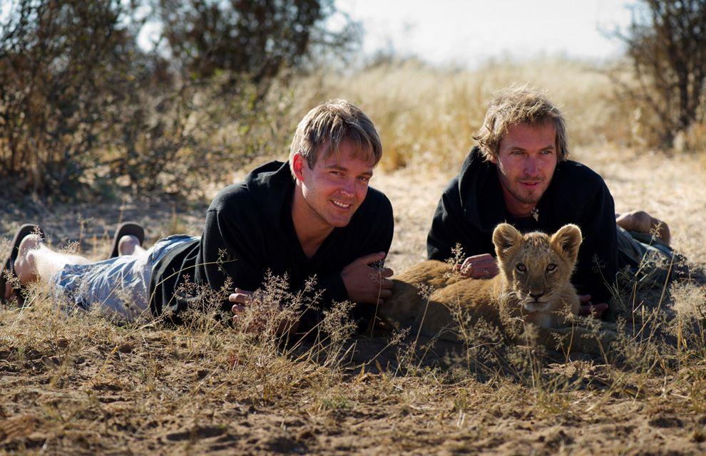 El amor de una leona a sus rescatadores