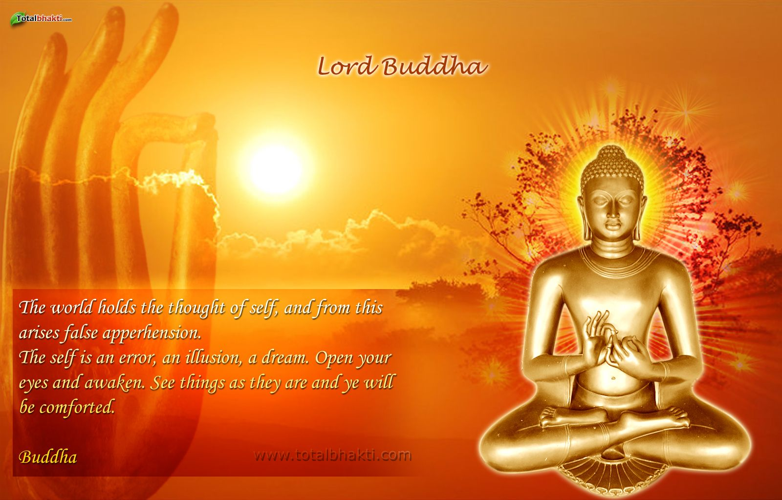 buddha images Lord Buddha HD wallpapers QUOTES & WORDS