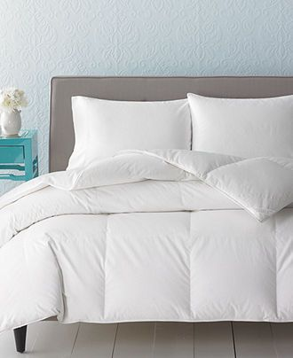 s comforter stewart alternative down this sleep white martha macys miss for deal sale on t don collection macy created cloud queen shop