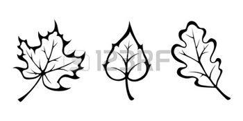 herbst blätter: Vector schwarzen Konturen der Herbst Ahorn, Eiche und Birke…