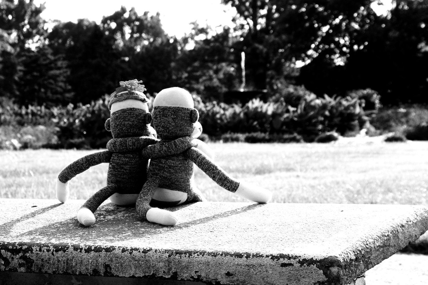 So cute! Definitely want this for the nursery <3  Sock Monkey Photograph Best Friends Black and by sweetbuttercup. $15.00 USD, via Etsy.