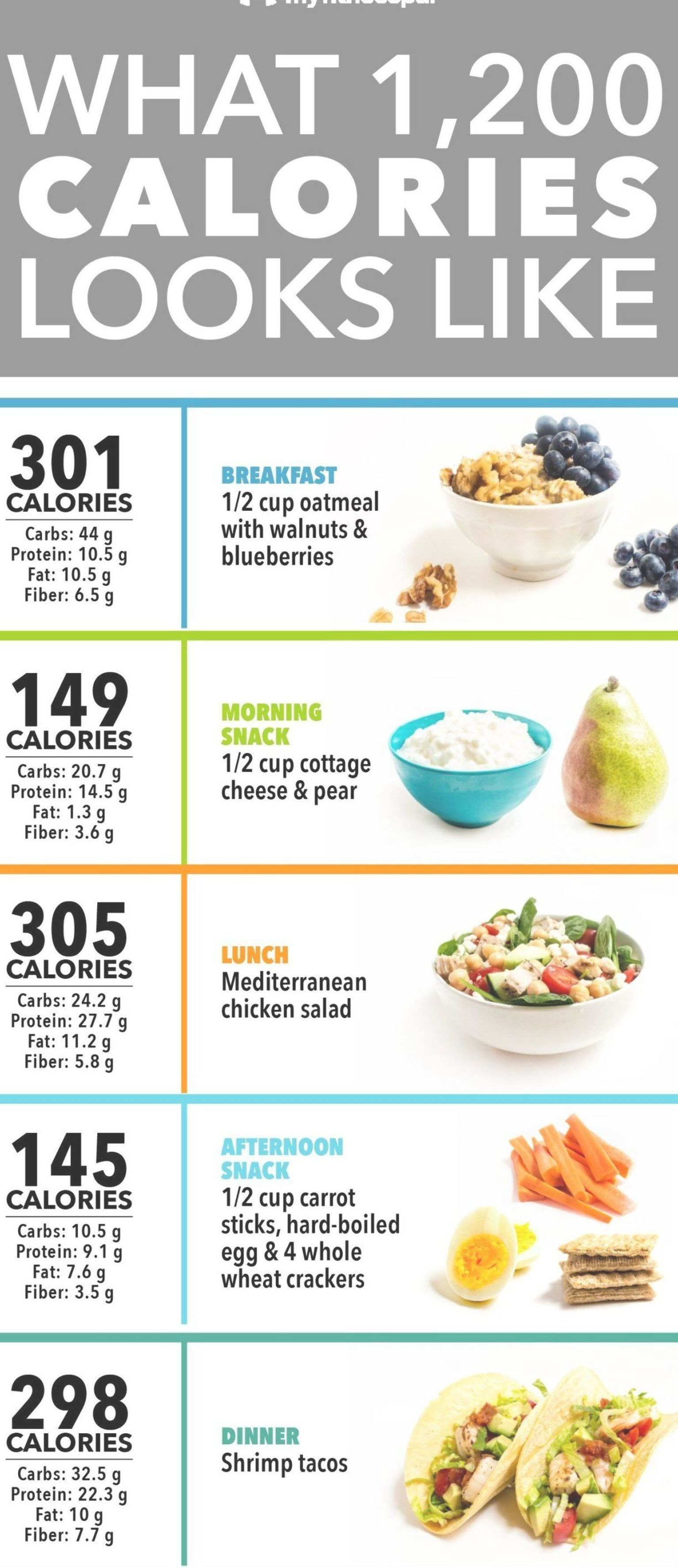 dr nowzaradan houston 1300 cal diet plan