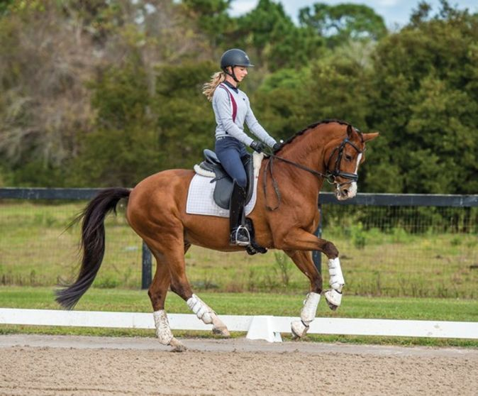 Laura Graves: How to Create a Self-Going Horse | Expert how-to for English Riders