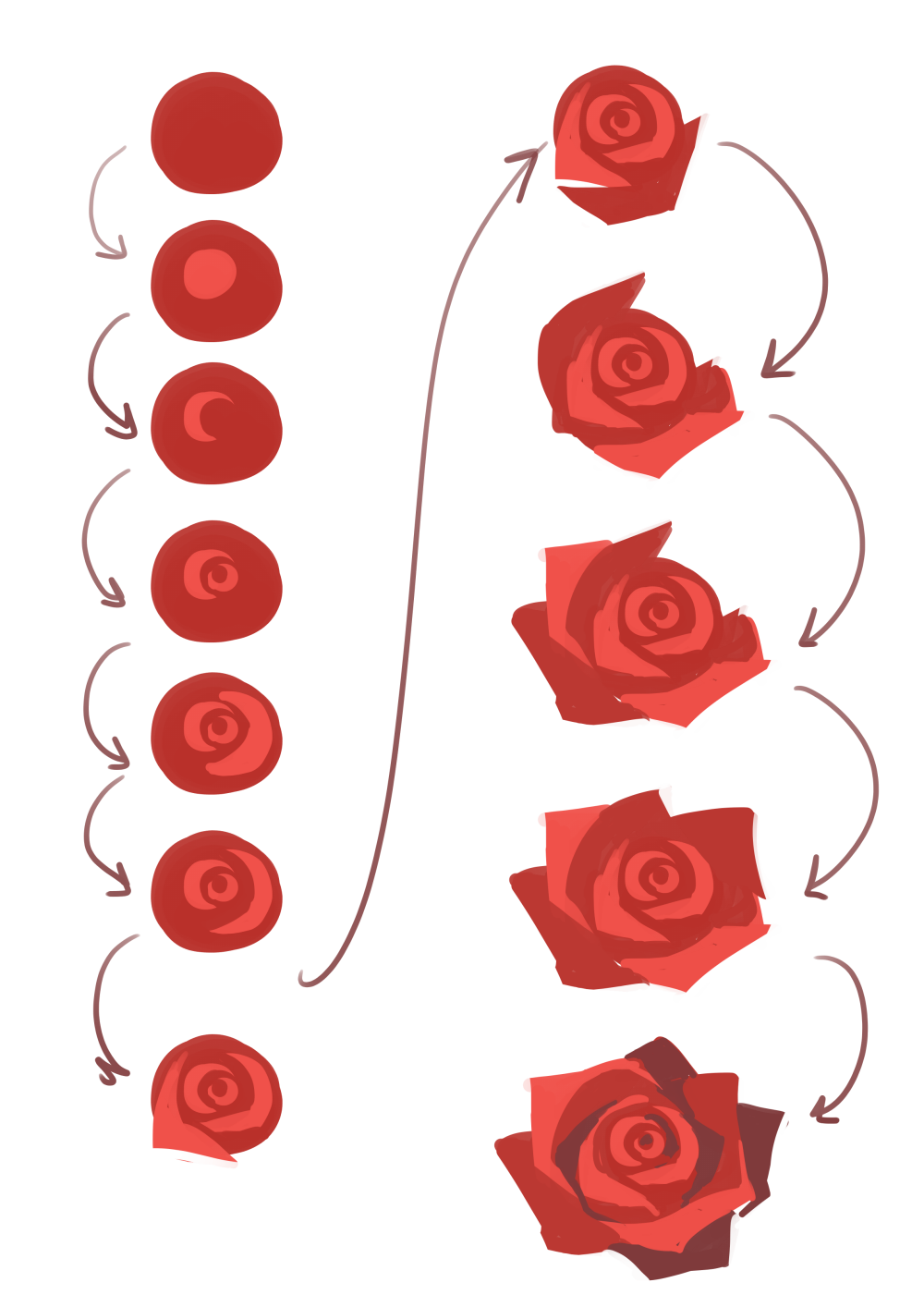 """japhers: """"it always helps to use reference pictures but in general here's a quick basic process for really fast rose making if you're pressed for time :D just remember that the petals are usually more..."""
