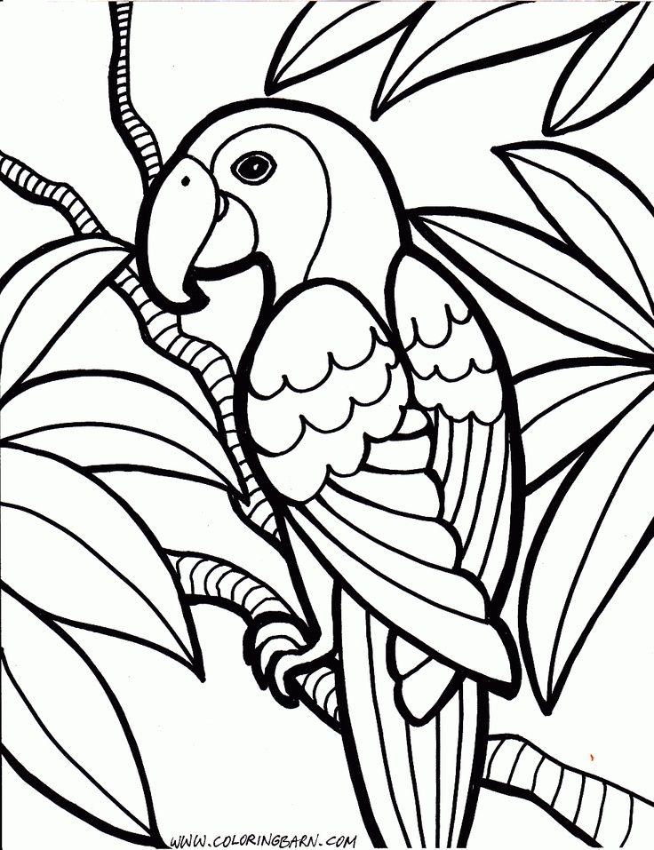 Resultado de imagem para parrot para pintar quilling Pinterest - new eagles to coloring pages