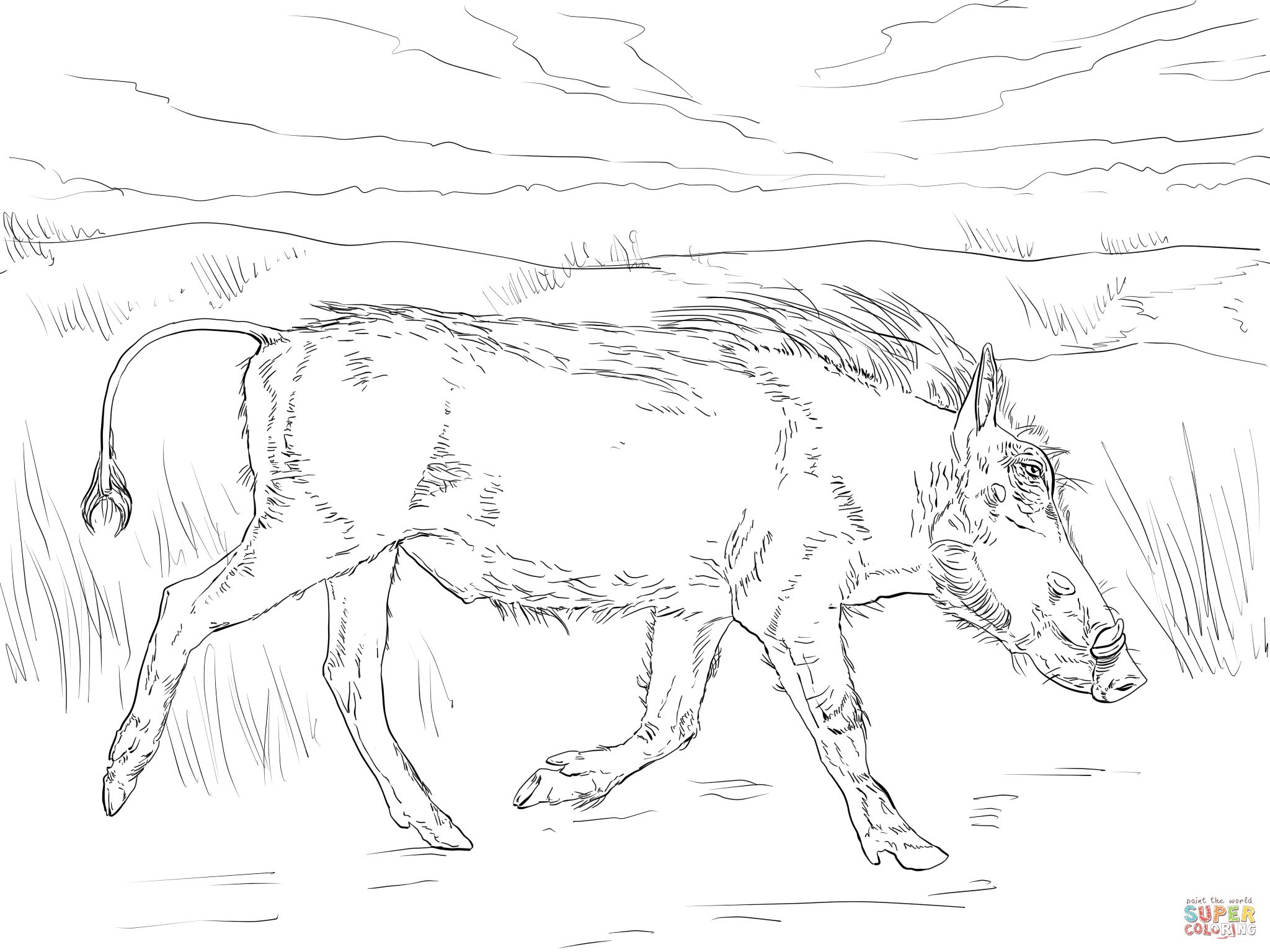 Walking Warthog Animal Coloring Pages Warthog Coloring Pages