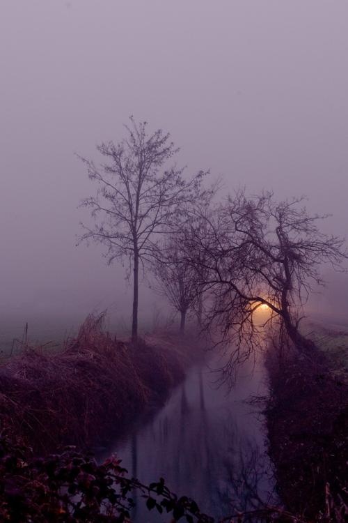Fog by Federico Ciati A Dark Scottish Lake.