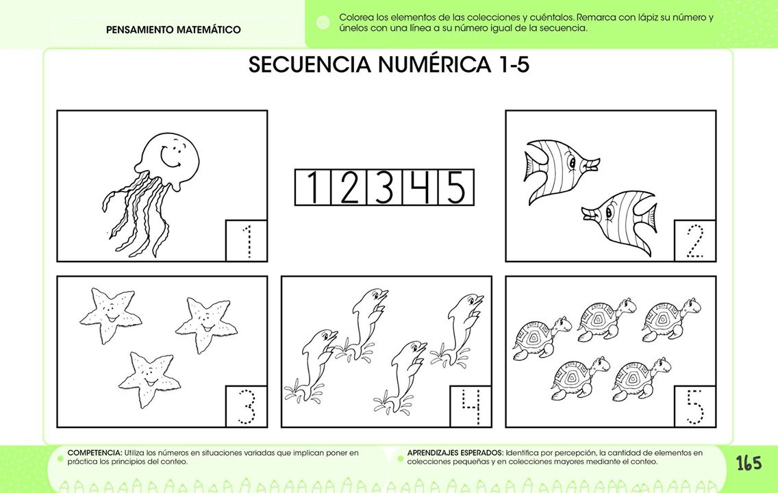 Secuencia numérica