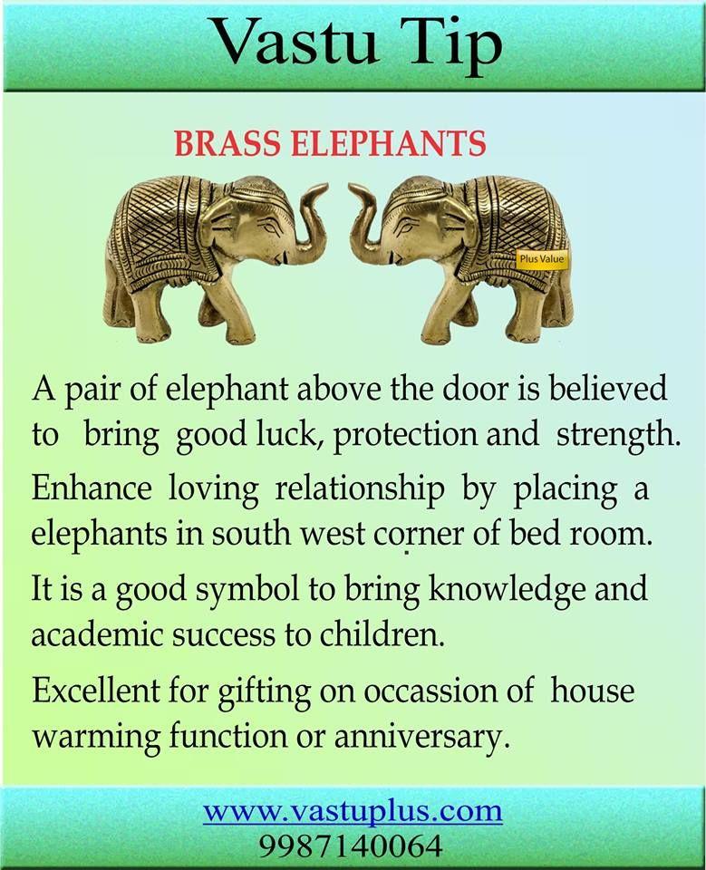 Vastu Tips Vastu Brass Elephant Home Decor Gift Housewarming Vastuconsultant Vaastu Vastutips Vastuexpert Feng Shui Tips Feng Shui House Feng Shui