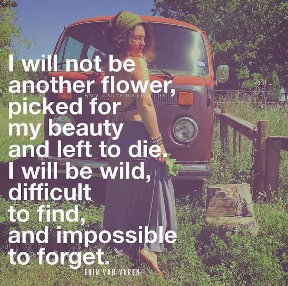 I Will Not Be Another Flower Picked For My Beauty And Left To Die I Will Be Wild Difficult To Vuren Words Of Wisdom Quotes Inspirational Quotes Motivation