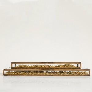 Rectangular Brass Framed Glass Shadow Box