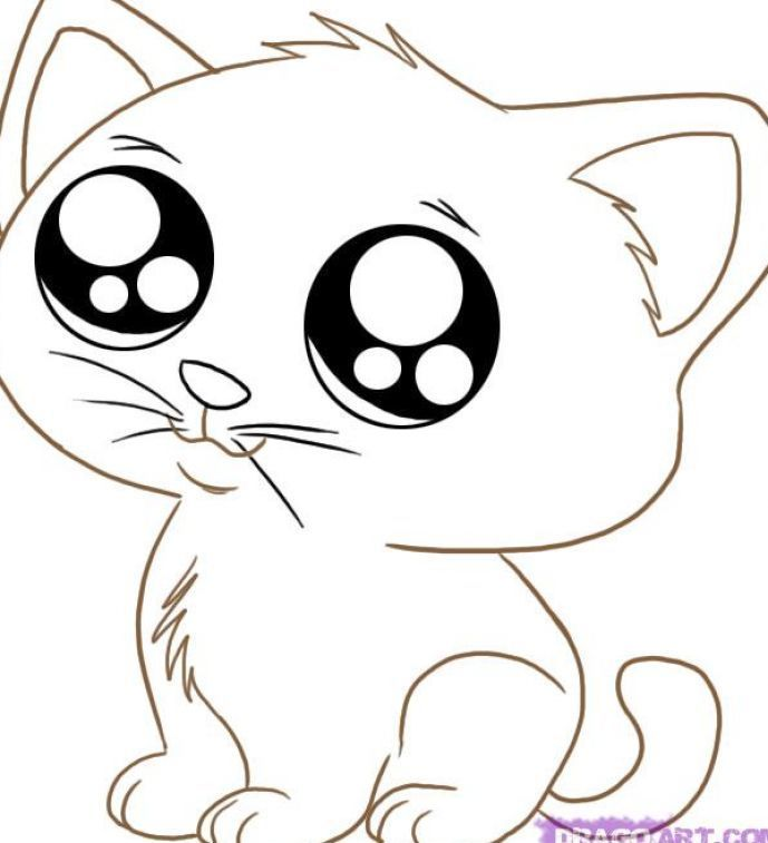 Cute Animal Coloring Pages Cartoon Cat Drawing Cat Eyes Drawing