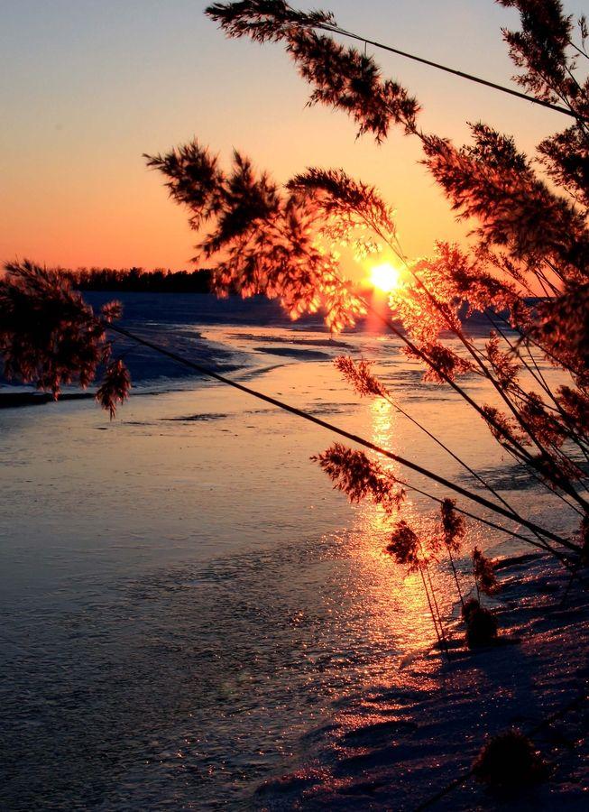 Golden Rays Of Sunlight Beautiful Nature Beautiful Landscapes