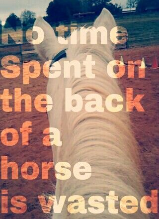 No time spent on the back of a horse is wasted♥- the truth!