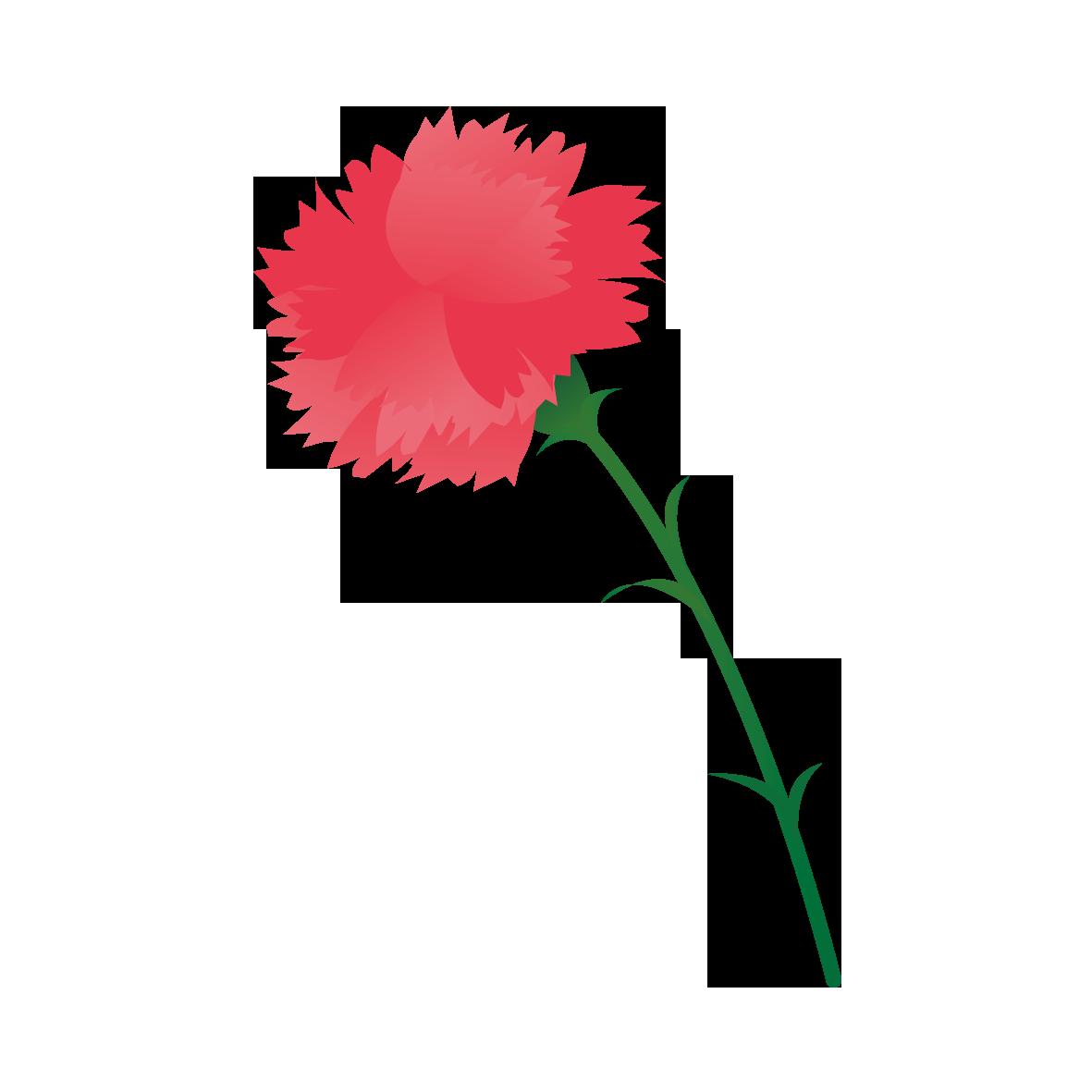 1輪のカーネーション 花 イラスト 藤の花 イラスト イラスト