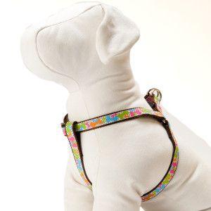 Top Paw Bone Dog Harness Harnesses Petsmart Petsmart