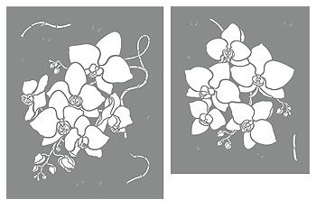 Large Orchid Flowers Stencil. Large Moth Orchid Stencil