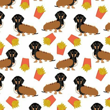 Fall Wallpaper Dog Weenie Dachshund Cute Pup Dogs Dachshund Dachshund Dog