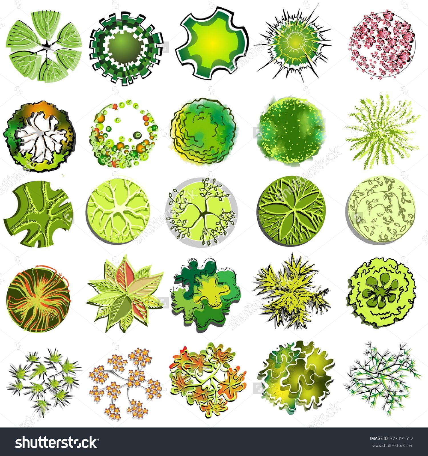 Shrub Graphic Symbols Diagram Motorcycle Brake Light Switch Wiring Related Image Plant Pinterest Landscape