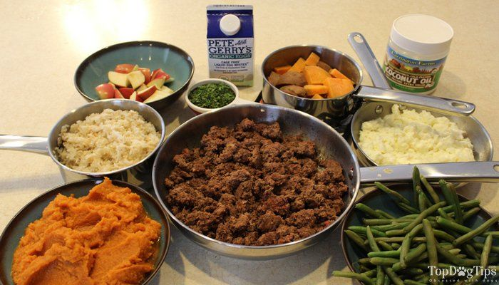 Homemade Dog Food For Kidney Disease Recipe Video Quick Simple