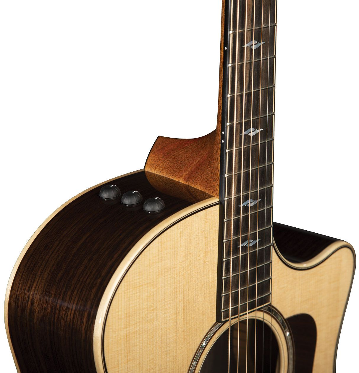 Acoustic Soundboard The Virtues Of A Stiff Neck Acoustic Guitar The Sonic