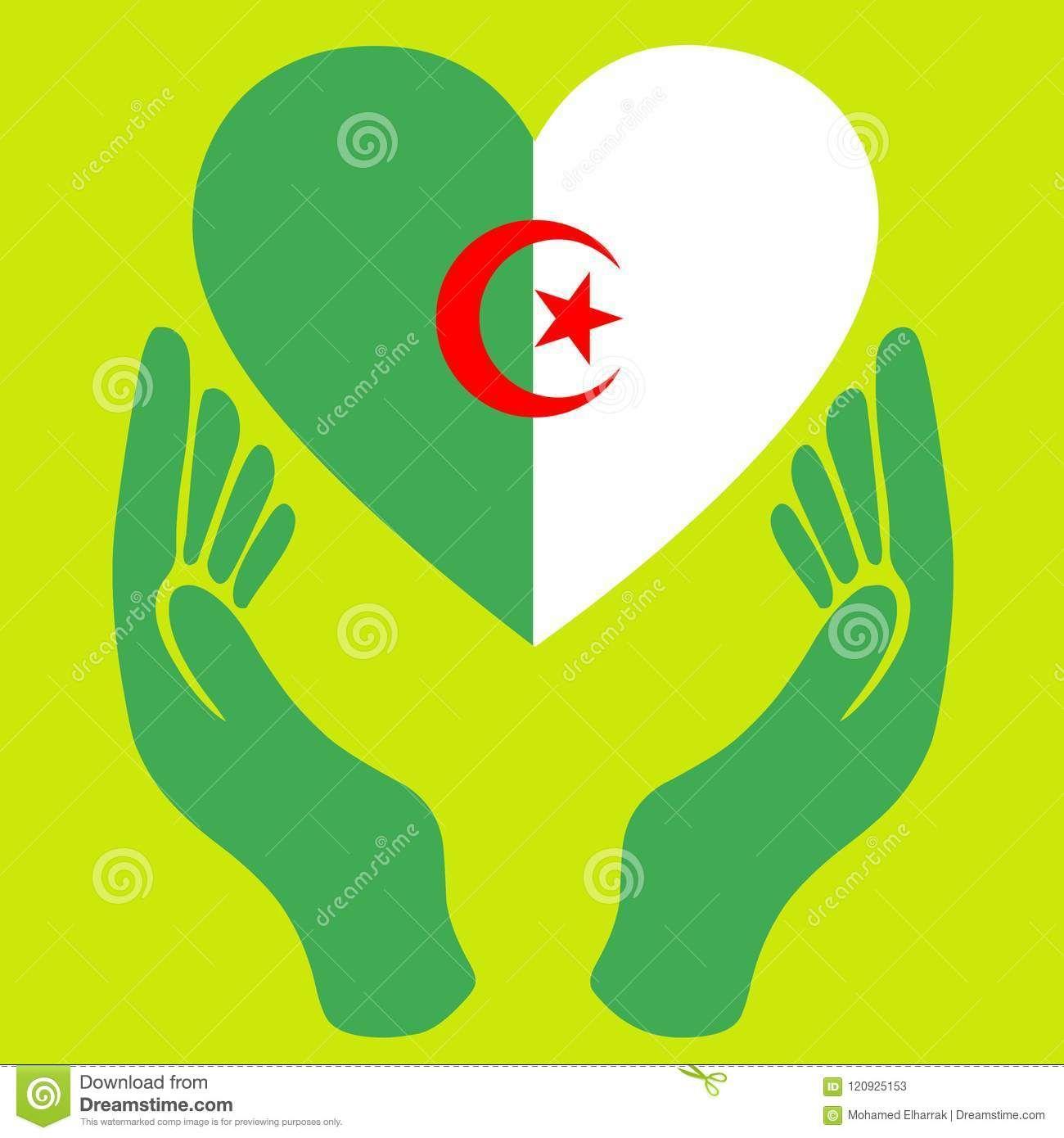 علم جزائري حب القلب أعطى أرصدة تصوير تصوير بسبب أعطى جزائري 120925153 Vector Illustration Algeria Flag Illustration