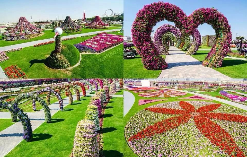 Love this place.. Dubai Miracle garden, Dubai garden