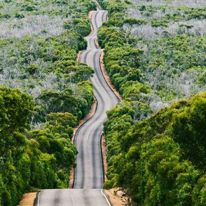 Kangaroo Island Beaches: Pin By Cassidy Blue On Roads